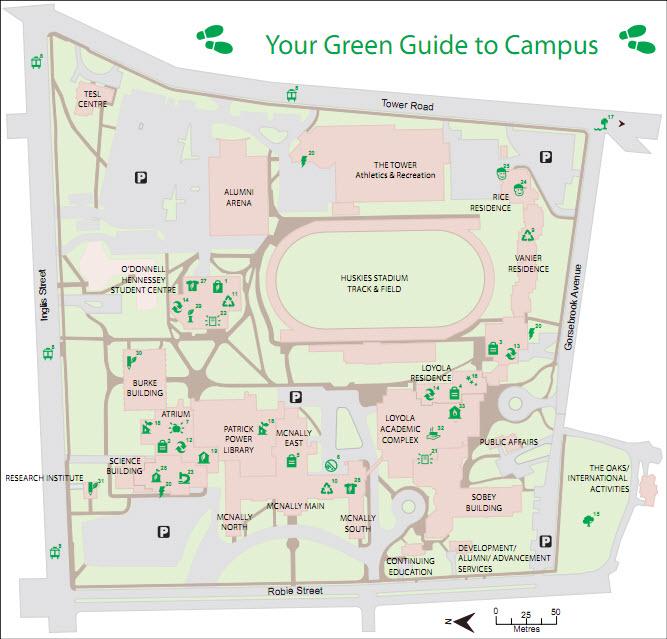 Saint Mary S University Sustainability Green Initiatives